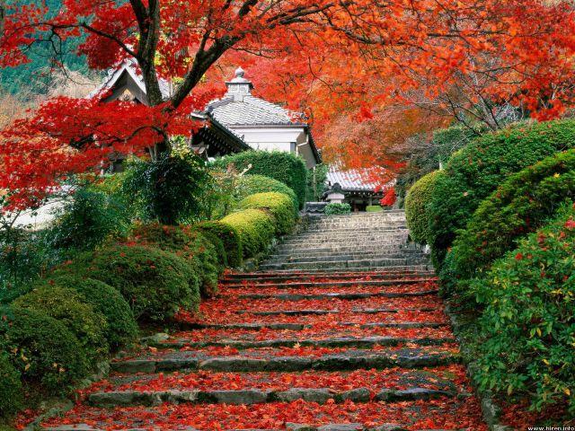 garden-staircase_kyoto_japan-Wallpaper